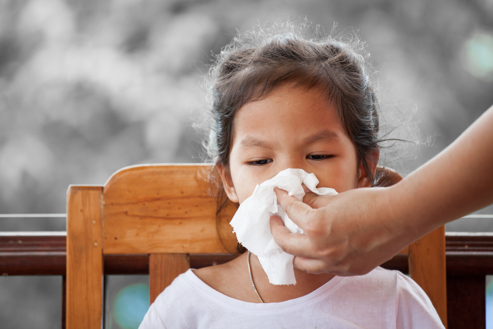 鼻血 花粉